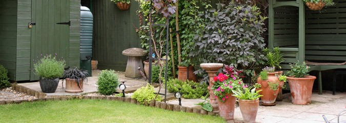 Our Range Of Gardening Services